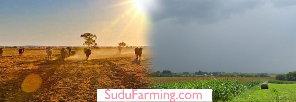 Role of weather in agriculture