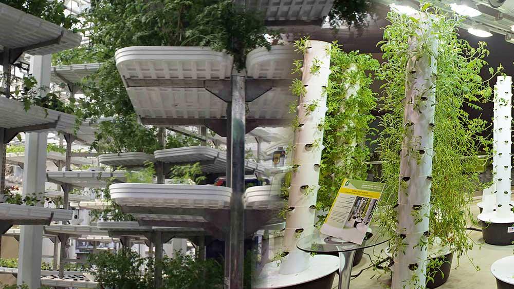 Vertical farming methods, vertical farming