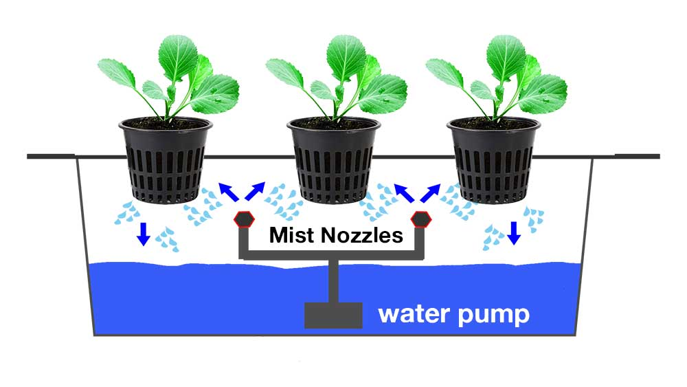 Aeroponics, hydroponics