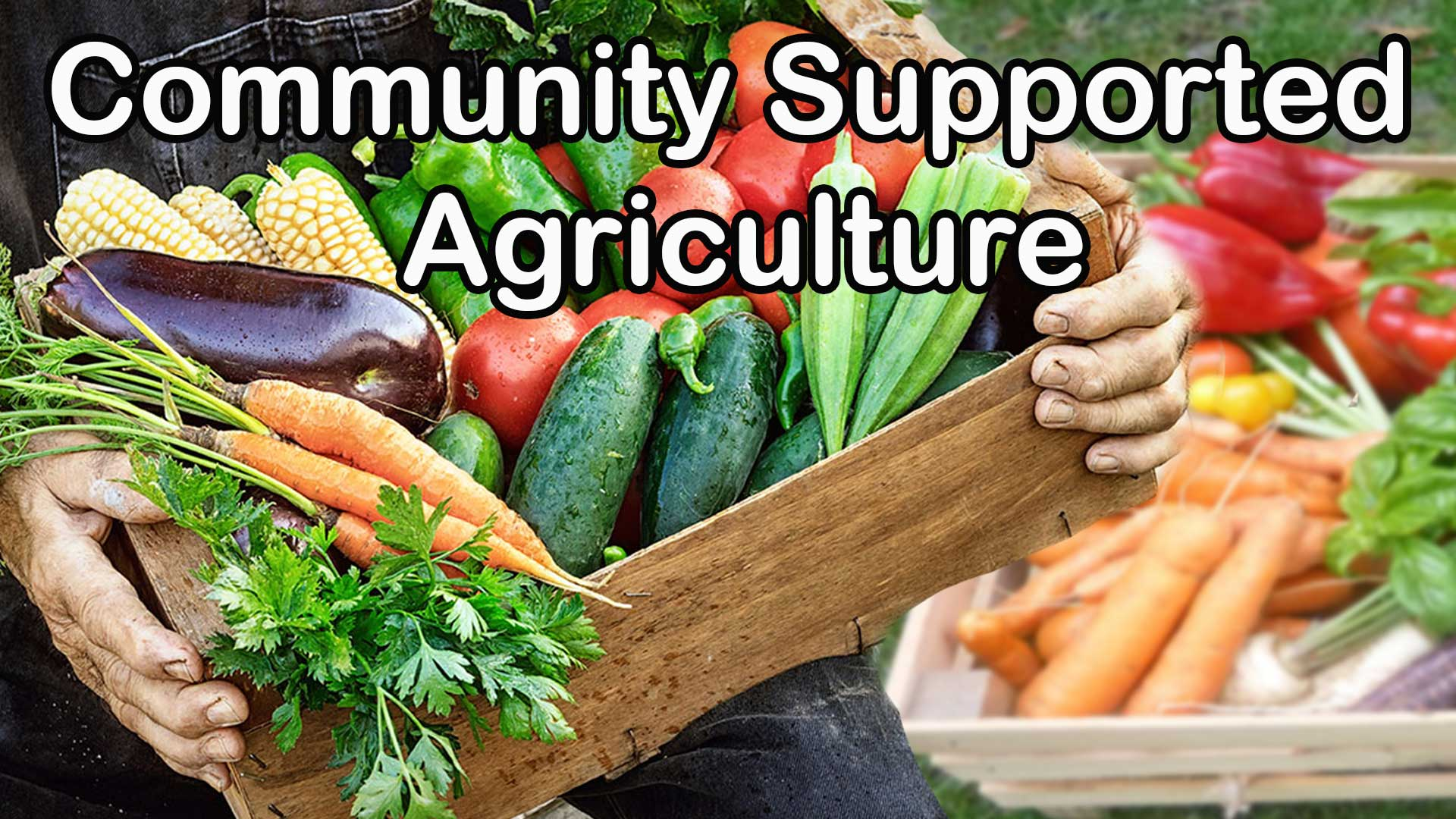 Community Support Agriculture