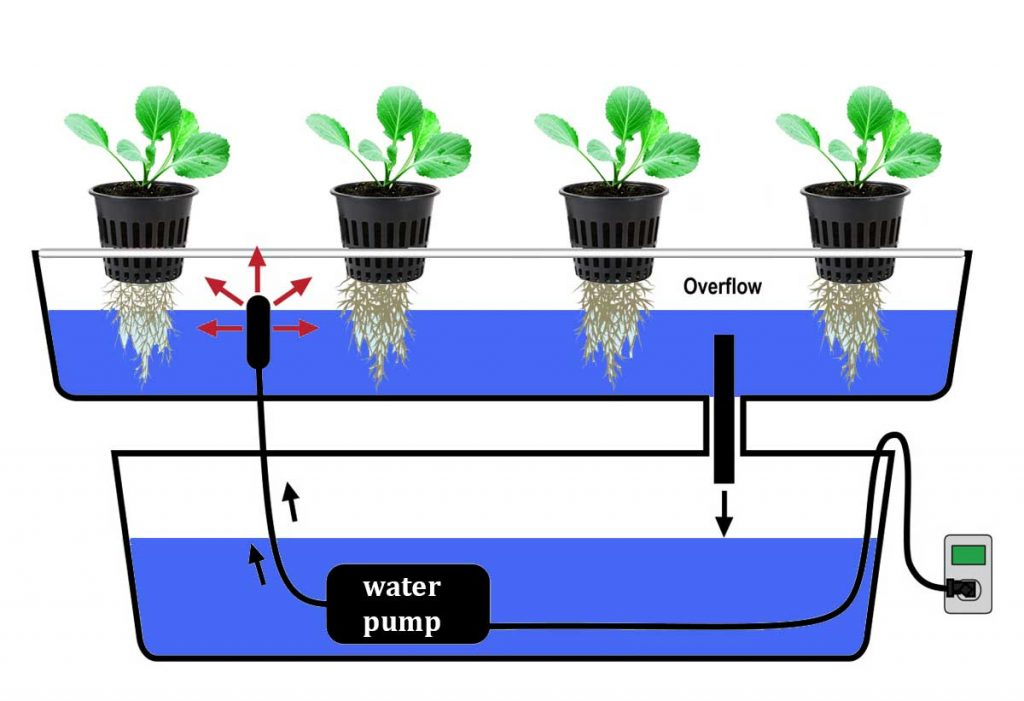 Ebb and Flow Technique, hydroponics