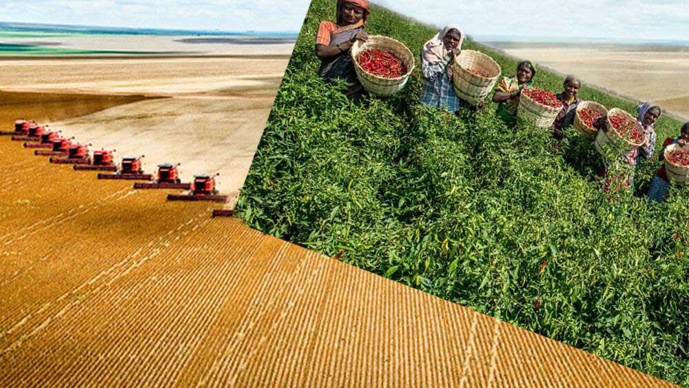 Industrialized intensive farming, non-industrialized intensive farming,
