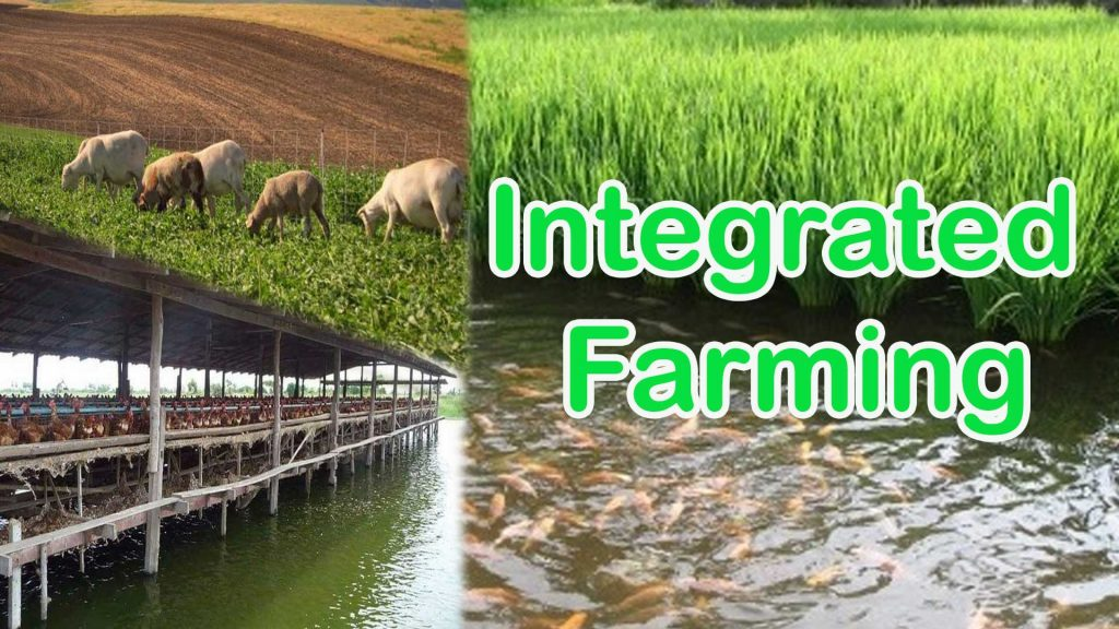 Integrated Farming Systems