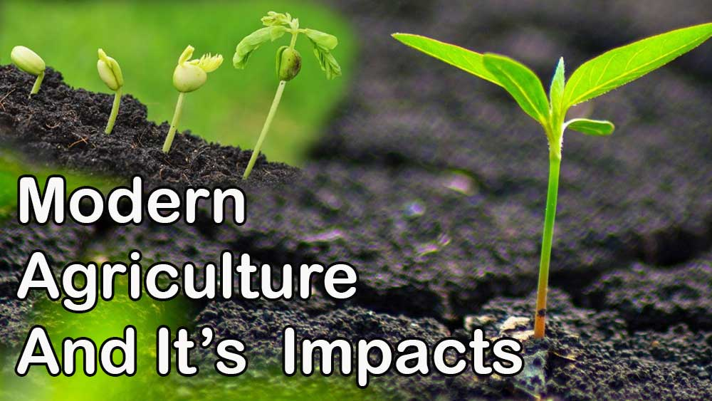 Modern Agriculture and It's Impact