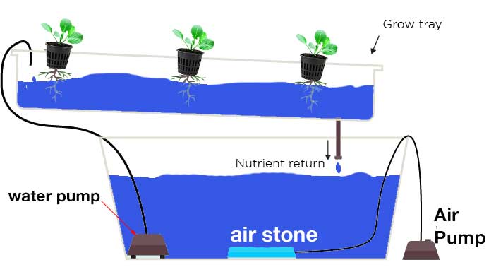 Nutrient Film Technology