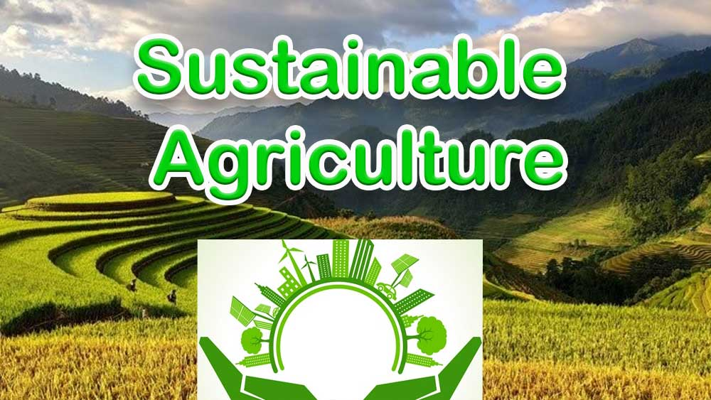 sustainable Agriculture, farming, agriculture, modern farming, modern agriculture