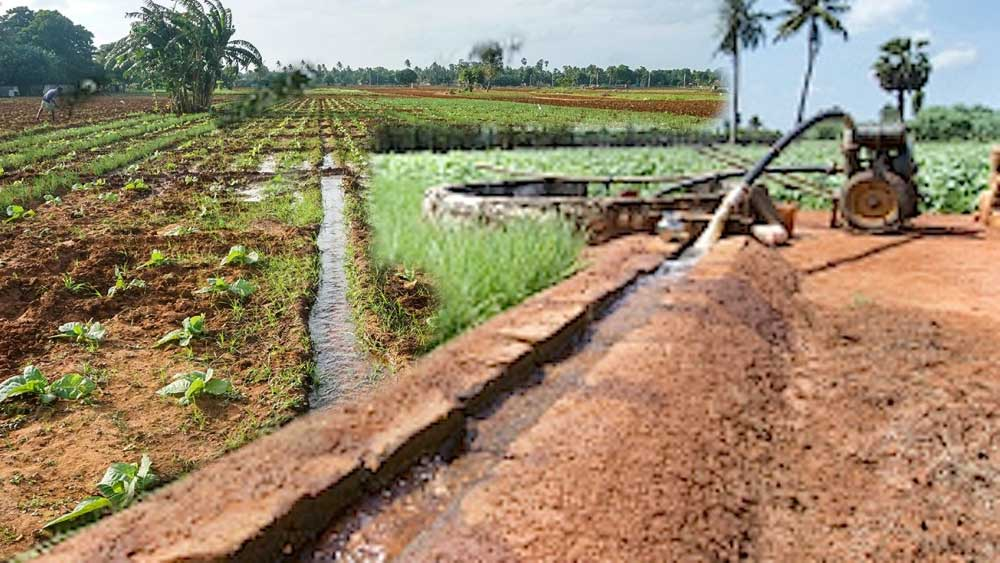 Water management farming, farming, water management