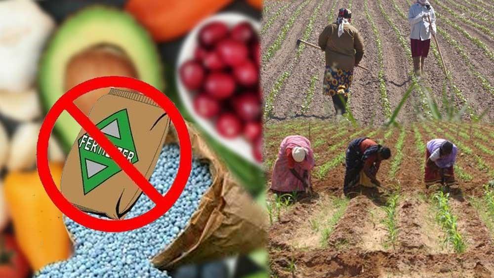 Organic Farming Practices