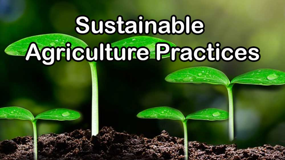 Sustainable Agriculture Practices